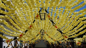 Rua das Festas do Povo de Campo Maior